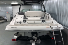 Rear Boarding Ladder of the 2021 Crownline 280 SS Bowrider Boat