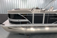 Silver Exterior Accent of the 2021 Sylvan L1 Cruise Pontoon Boat